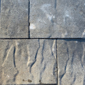 LaFitt Grana Slab Lueders Gray Pavers
